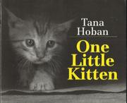 ONE LITTLE KITTEN by Tana Hoban