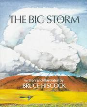 THE BIG STORM by Bruce Hiscock