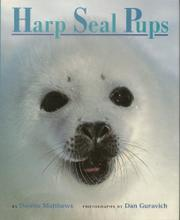 HARP SEAL PUPS by Downs Matthews