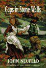 GAPS IN STONE WALLS by John Neufeld