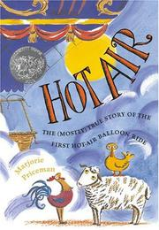 Book Cover for HOT AIR