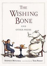 Cover art for THE WISHING BONE