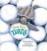 ONE TINY TURTLE by Nicola Davies