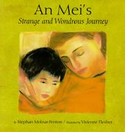 AN MEI'S STRANGE AND WONDROUS JOURNEY by Stephan Molnar-Fenton