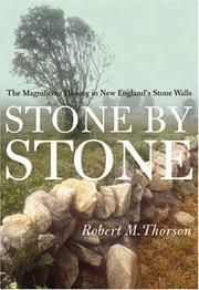 STONE BY STONE by Robert M. Thorson