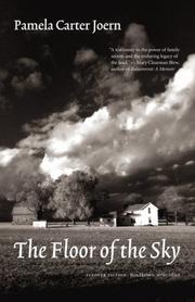 THE FLOOR OF THE SKY by Pamela Carter Joern