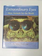 EXTRAORDINARY EYES by Sandra Sinclair