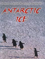 ANTARCTIC ICE by Jim Mastro