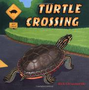 Book Cover for TURTLE CROSSING