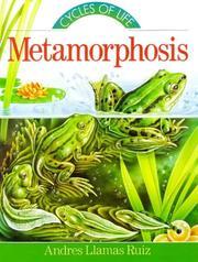 METAMORPHOSIS by Andrés Llamas Ruiz