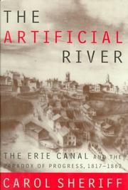 THE ARTIFICIAL RIVER by Carol Sheriff