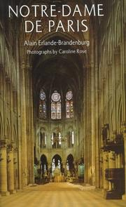 NOTRE-DAME DE PARIS by Alain Erlande-Brandenburg