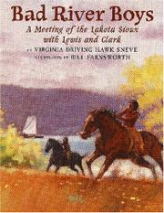 BAD RIVER BOYS by Virginia Driving Hawk Sneve