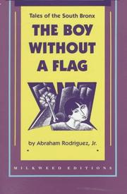 THE BOY WITHOUT A FLAG by Jr. Rodriguez