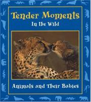 TENDER MOMENTS IN THE WILD by Stephanie Maze