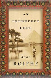 Cover art for AN IMPERFECT LENS