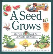 A SEED GROWS by Pamela Hickman