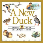 A NEW DUCK by Pamela Hickman