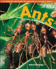 ANTS by Deborah Hodge