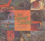 THE SUNSET SWITCH by Kathleen V. Kudlinski