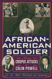 THE AFRICAN-AMERICAN SOLDIER by Michael Lee Lanning