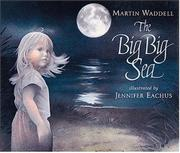 Book Cover for THE BIG BIG SEA