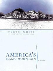 AMERICA'S MAGIC MOUNTAIN by Curtis White