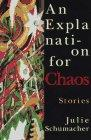 AN EXPLANATION FOR CHAOS by Julie Schumacher