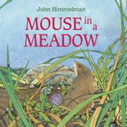 MOUSE IN A MEADOW by John Himmelman