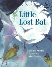 Book Cover for LITTLE LOST BAT