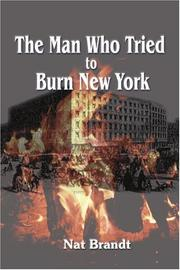 THE MAN WHO TRIED TO BURN NEW YORK by Nat Brandt