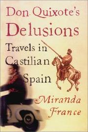 DON QUIXOTE'S DELUSIONS by Miranda France