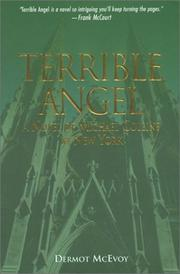 TERRIBLE ANGEL by Dermot McEvoy