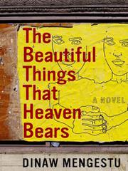 Book Cover for THE BEAUTIFUL THINGS THAT HEAVEN BEARS