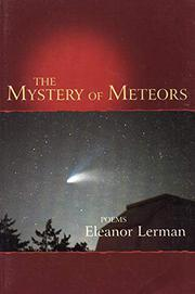 THE MYSTERY OF METEORS by Eleanor Lerman