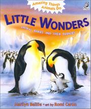 Cover art for LITTLE WONDERS