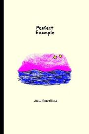 Cover art for PERFECT EXAMPLE