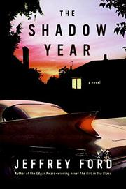 Cover art for THE SHADOW YEAR
