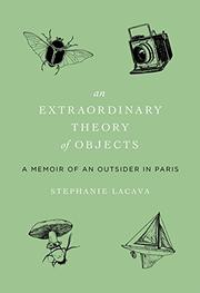 AN EXTRAORDINARY THEORY OF OBJECTS by Stephanie LaCava