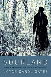Book Cover for SOURLAND