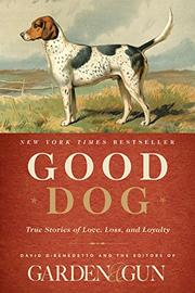 GOOD DOG by David DiBenedetto