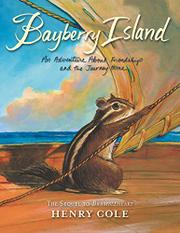 BAYBERRY ISLAND by Henry Cole