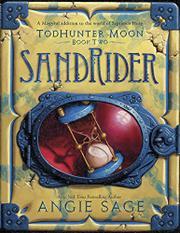 SANDRIDER by Angie Sage