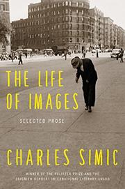 THE LIFE OF IMAGES by Charles Simic