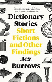 DICTIONARY STORIES by Jez Burrows