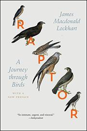 RAPTOR by James Macdonald Lockhart