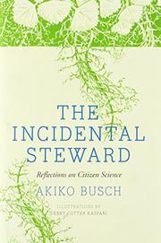 THE INCIDENTAL STEWARD by Akiko Busch