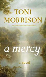 Book Cover for A MERCY
