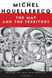 Book Cover for THE MAP AND THE TERRITORY