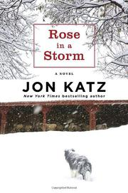 ROSE IN A STORM by Jon Katz